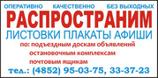 Распространение листовк,  расклейка в Ярославле.