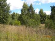 Земля сельхозназначения вблизи деревни Красногор Переславский район