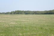 Участок сельхозназначения Переславский район недорого