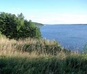 Продаю земельные участки на берегу Рыбинского водохранилища.