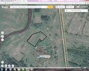 Продается земля у воды,  р. Соть,  земли населенных пунктов