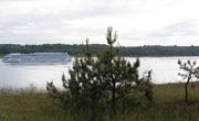 Продаю участки ИЖС,  10-20 сот. 15 км. от Рыбинска,  д. Артюкино,  Яросла