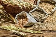 Закупаем зерновые, бобовые, масличные