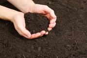 Плодородная земля с доставкой